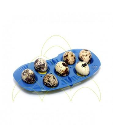 Tabuleiro Mini - Rcom: Com 7 ovos pequenos de codorniz