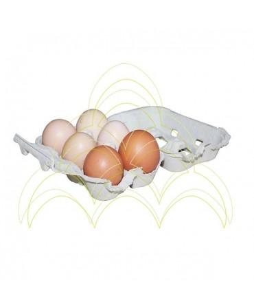 Embalagem em Cartão - Ovos de Galinha: Aberta com 6 ovos