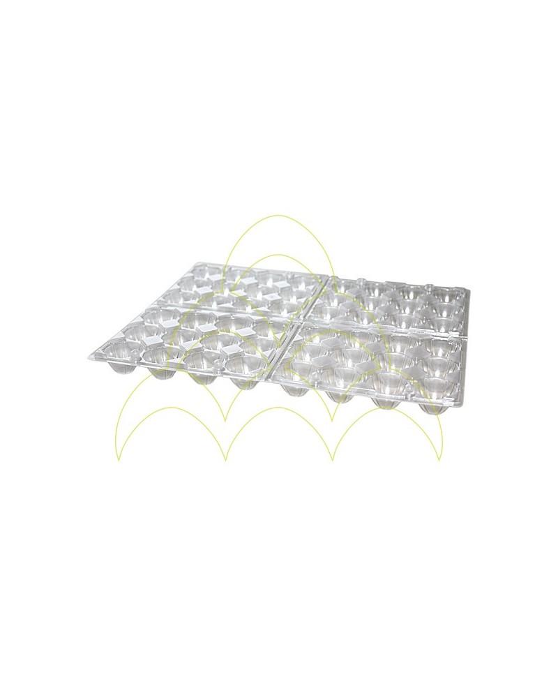 Embalagem em Plástico - Ovos de Codorniz