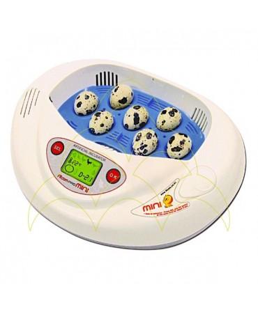 Rcom Mini com tabuleiro para ovos pequenos: Com ovos de codorniz