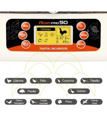 Rcom 50 Pro: Interface
