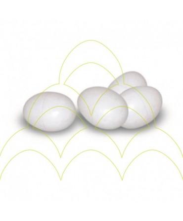 Ovos em Plástico - Pássaro - Branco