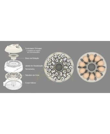 Rcom 10 ECO - Automática: Componentes básicos