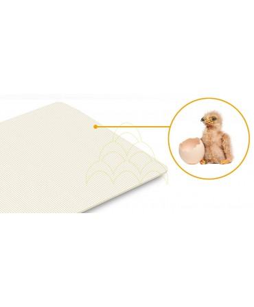 Rcom 50 Max: Egg-turning plate anti-slip