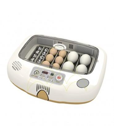 Rcom Max 20 DO: Com ovos