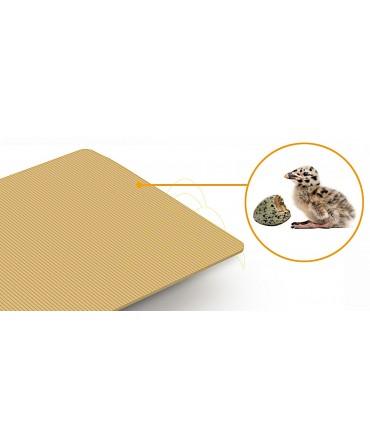Rcom Max 20 DO - Com Kit de Rolos: Tapete de viragem de ovos antiderrapante