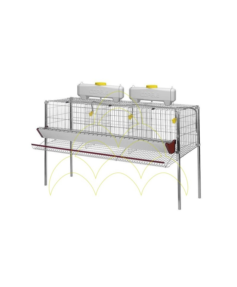 Cage for Laying Hens: 3 compartments and 1 level