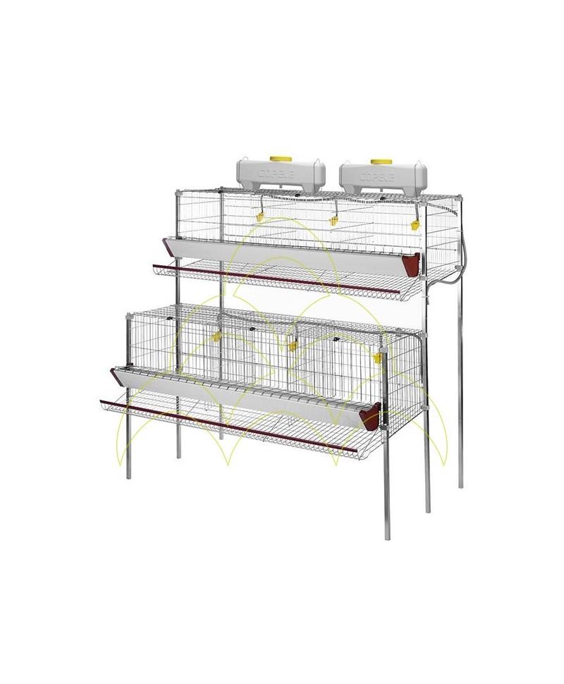 Jaula para Galinhas Poedeiras: 6 compartimentos e 2 níveis