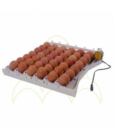 Tabuleiro de viragem automática - 42 ovos Galinha