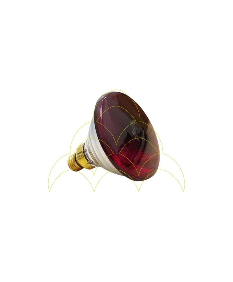 Lâmpada IV Reforçada - 100W