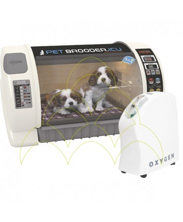 PACK - PET Brooder Large N + Concentrador de Oxigénio