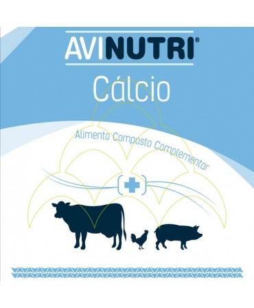 Vitamina Avinutri Electrolitos 1 Kg