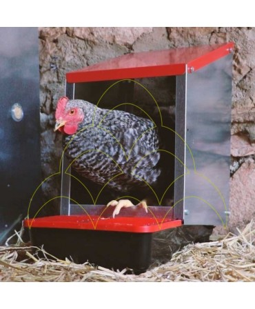 Nesting box for chickens 1 compartment galvanized - inside: Nest on the ground with one chicken inside